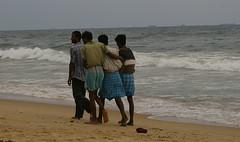 Buds (a_sorense) Tags: india marinabeach chennai