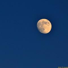 Pre-Sunset Moon (20071221-162122-PJG) (DrgnMastr) Tags: moon nature bravo harmony cropped pictureperfect fpc blueribbonwinner vob magicdonkey interestingness245 i500 naturesgallery mywinners perfectangle 40v5f worldbest platinumphoto anawesomeshot impressedbeauty allrightsreserveddrgnmastrpjg rawjpg betterthangood theperfectphotographer 74v10f 113v15f explore20071222 161v20f thecelebrationof~life~ pjgergelyallrightsreserved