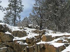 Durango Christmas II 2007 023