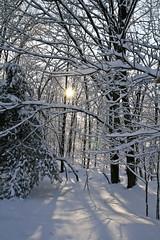 winter landscape-54 (lara osh) Tags: snow winterlandscape bearsrock