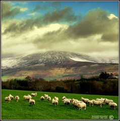 COLD MOUNTAIN. (IRELAND) (Edward Dullard Photography. Kilkenny, Ireland.) Tags: kilkenny ireland landscape scenery photographic eire hibernia emeraldisle carlow themoulinrouge dullard mywinners anawesomeshot aplusphoto superbmasterpiece onlythebestare edwarddullard betterthangood goldstaraward societyedward