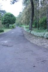 Village Road (Freddy Aldo) Tags: road vilage bicapz