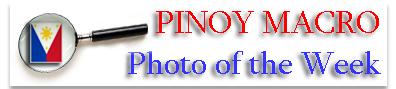 Pinoy Macro