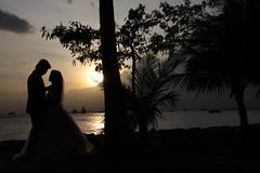 wedding in paradise (kurokojpn) Tags: japan tokyo orlando   kuroko canon40d photosjapan kurokoshiroko kuroko01 kurokoshiroko photographytokyo photostokyo bestoftokyo tokyobest orlandojpn thetokyopost kurokojpn