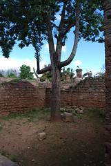 DSC_0097.JPG (tenguins) Tags: africa castle architecture ruins mosque arabic adventure morocco berber fortress islamic rabat chelle siteseeing chella romanruins