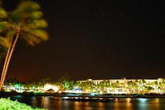 Palm Dance and Star-Filled Sky (bluemarla) Tags: stars hawaii palm bigisland bluemarla utata:project=nocturnal2