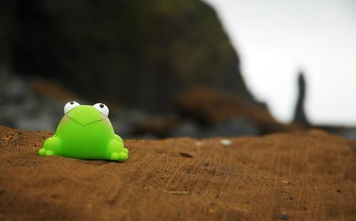 J3: FrogZ @Dyrholaey