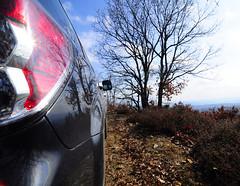 _DSC4191 (rotor_flux) Tags: subaru subaruforester forester sh forestermk3 forestersh nikon nikond90 woods forest mountain tokina1224 tokina tokina124 nikond90tokina 1224 winter wideangle wide