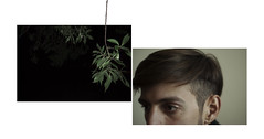 (▲·stardust) Tags: boy guy mariano dyptich diptico plant leave branches hair eyes