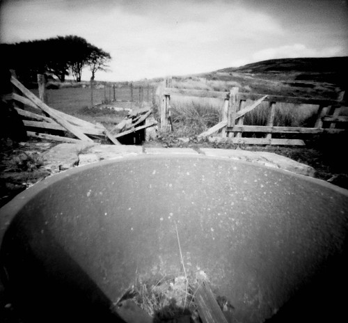 The sheep dip pot pinhole image