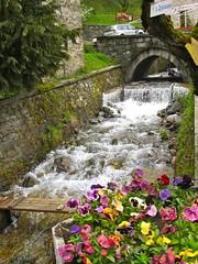 River in the Spring - Rila Monestary, Bulgaria (waynedunlap) Tags: world travel flowers flower river escape sofia plan bulgaria rila your now monestary bulgarian gurus unhook unhooknow