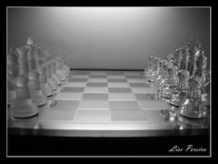 (Lise Pereira) Tags: game nikon photos chess lise jogo xadrez artístico pereira tabuleiro partida xeque lisepereira