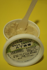 Tokyo - Ice-cream Museum
