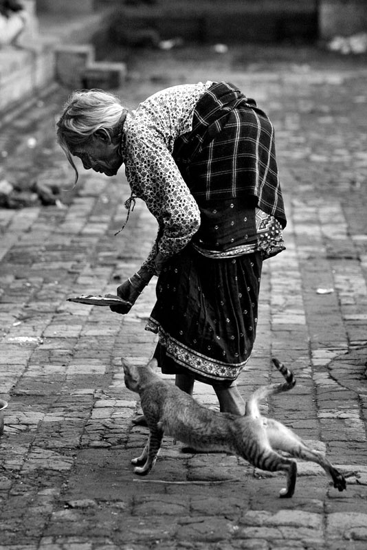 Lady and cat by Shehab Uddin @ NEPALPHOTOGRAPHY.org
