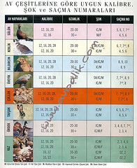 2127669824 cc28903eba m hangi kuşa hangi cins fişek atılmalıdır