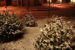 Snowing 1-16-08