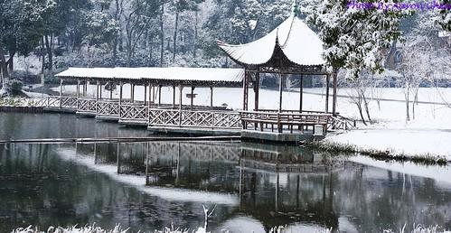 中國蘇州昆山的亭林公園