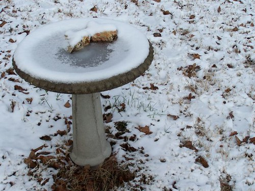 heart rocks, birdbath and snow