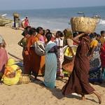 Indien: Puri thumbnail