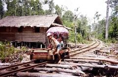 Enfants jouant sur une voie ferrée artisanale destinée aux bûcherons, Kalimantan-Centre, 1993 (www.flickr.com/slint 4587).