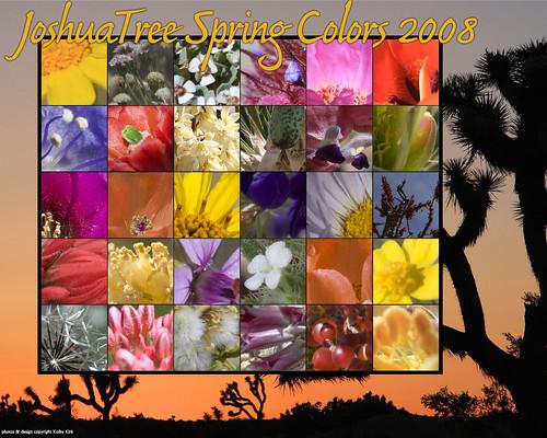 1280x1024_flowersdesktop