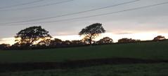 Horizons (Screwdriver32,more off than on :-() Tags: trees sunset landscape fuji finepix fujifilm hs10 hs11 myfuji myfjui screwdriver32screwy32ayrayrshirescotlandcampinghorizon johnscrewdriver