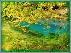 Blautopf1 (eetee2007 (300K, I thought I´d never make it.)) Tags: tree water blautopf blaubeuren scenicsnotjustlandscapes