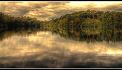 The changing.. (jetbluestone) Tags: autumn lake nikon shropshire ellesmere colemere 10faves d80 thegoldenmermaid