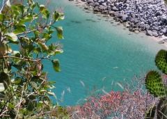 Tropea (zio paperino) Tags: italien sea italy beach nature geotagged italia mare natura calabria ziopaperino mygearandme mygearandmepremium mygearandmesilver mygearandmegold