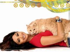 shilpa-shetty-fame (boy kris) Tags: shilpa shetty shilpashetty
