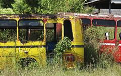 Dead bus