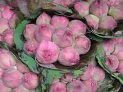 2059624951_46e376127e_m dans 2007 Thaïlande