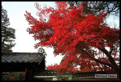 嵐山_20071124_150024_(1417)