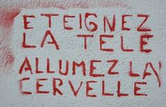 Turn off TV, turn on brain (CAZASCO / Benot Ferradini) Tags: france turn la tv nikon brain off d200 carcassonne tl cervelle allumez teignez