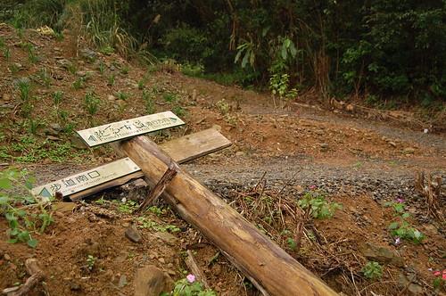 倒塌的路標