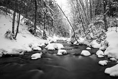 (Holy Smokes) Tags: winter bw snow monochrome highcontrast parrysound canon30d efs1755