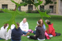 Leaves and small group theology discussion
