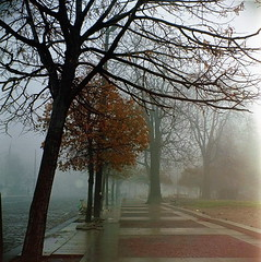 foggy Sofia morning (Vinzent M) Tags: weltaflex sofia bulgaria trioplan fog superia meyeroptikgörlitztrioplan3575mm 120film zniv welta tlr
