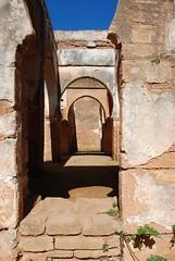 DSC_0088.JPG (tenguins) Tags: africa castle architecture ruins mosque arabic adventure morocco berber fortress islamic rabat chelle siteseeing chella romanruins