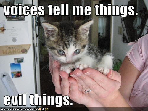 Voices tell me things-Evil things! | Flickr - Photo Sharing!