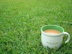 greeeeeeeeeeeen (shelley1968) Tags: green cup coffee grass java coffeecup lawn joe mug coffeemug cmwdgreen
