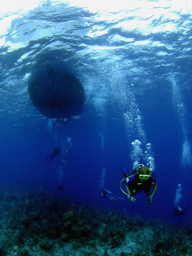 Galapagos Islands Diving Tours