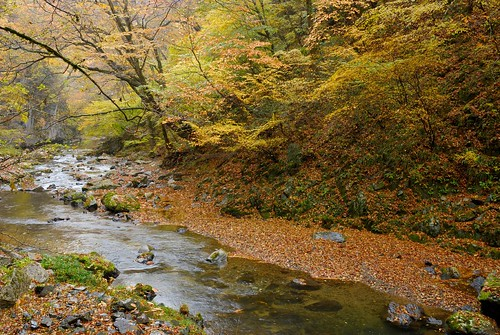 silent river : autumn in taisyaku-ravine '07