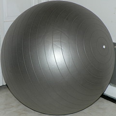My mom's exercise ball