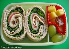 Turkey roll-up bento lunch for preschooler