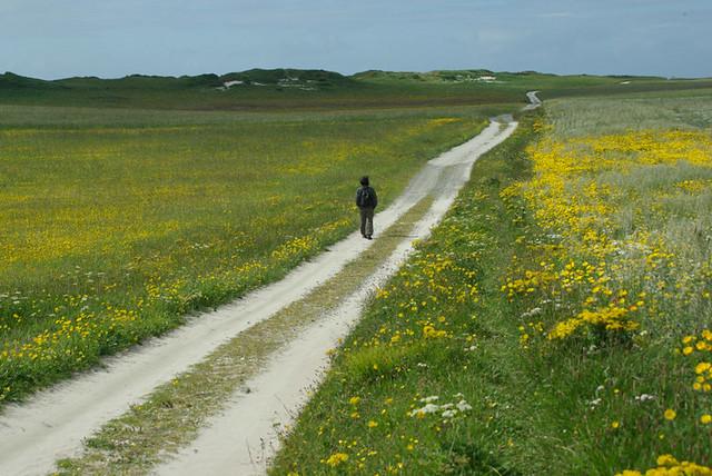 Viaggiatore solitario