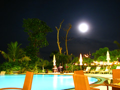 While Taking Dinner (Trim Reaper) Tags: birthday party pool swimming canon hotel evening is lowlight ambientlight philippines powershot resort swimmingpool cebu marco moonlight polo nighshot s5 noflashphotography cebusugbo s5is