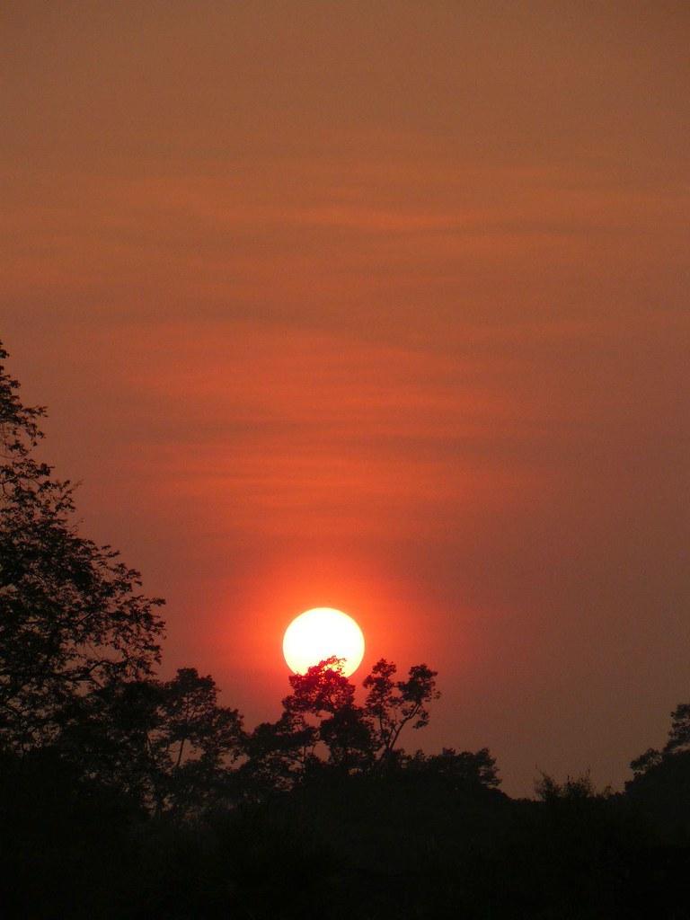 Cambodge - Angkor #16