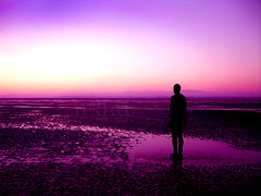 a. gormley sculpture (nyah74) Tags: ocean uk england sculpture man liverpool sand iron purple cast hue southport anthonygormley anotherplace