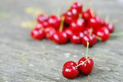 cherry kiss (*Peanut (Lauren)) Tags: cherry still bokeh sooc workispilingupnotimetoprocess yoursoocisawesome myhubbyisgonnadivorceme